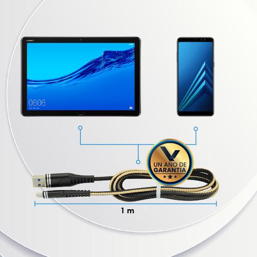 Cable_Reforzado_USB_Tipo_C_4_Virtual_Zone